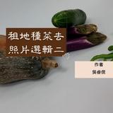 租地種菜去照片選輯二